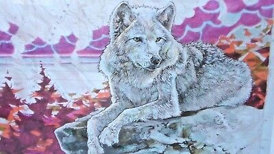 Wolf 8X10 New Picture Print, Signed/dated/titled Printed By Artist