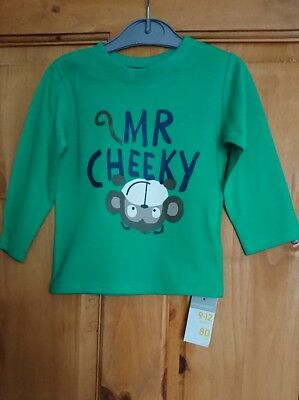 Boys long sleeve green top with fun wording and motif. Age 9-12 months