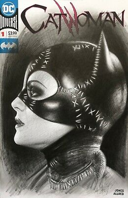Dc Universe Catwoman Variant Comic Cover By Andy Fry Catwoman Michelle Pfeiffer