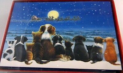 Box of  Dogs and Cats Watching Santa Fly By  Christmas Cards Glitter 18  cards