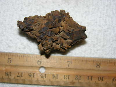 """Coprolite real fossil Dinosaur dung Madagascar, Africa 2.5x1"""" dino poo X2"""