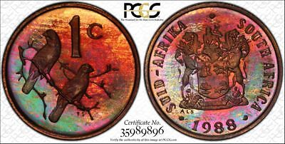 1988 South Africa 1 Cent 1C PCGS PR67RB - Colorful Rainbow Toning
