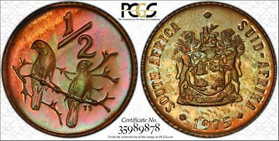 1975 South Africa 1/2 Cent 1/2C PCGS PR66RB - Colorful Rainbow Toning