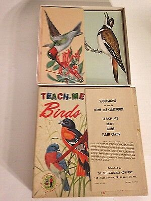 VINTAGE Teach Me About Birds Flash Cards From 1962 SET 48 COMPLETE GREAT ART!!