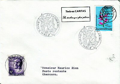 1967 Luxembourg. 6f Red Helleborine Orchid on cover. Merry Christmas postmark