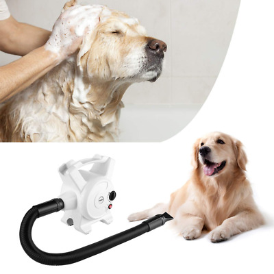 Portable Pet Hair Dryer Quick Blower Heater w/ 3 Nozzles Dog Cat Grooming White