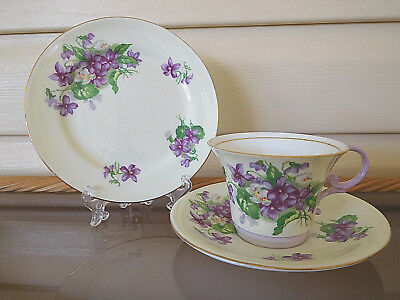 "Aynsley ""Wild Violets"" Trio C834 /5 Made In England 1930s"
