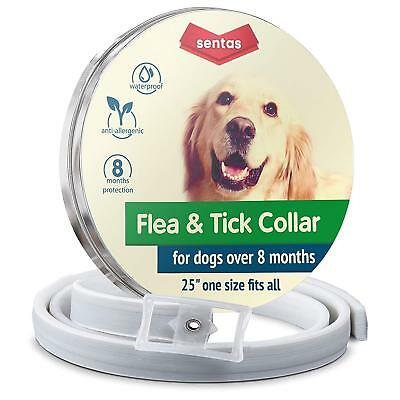 Dog flea and Tick Collar - Flea and Tick Prevention for Dogs One Size Fits All