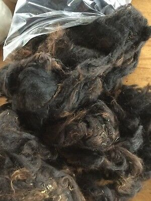 Bay Black Baby Alpaca(Cria) Washed 100g Spinning/needle Felting