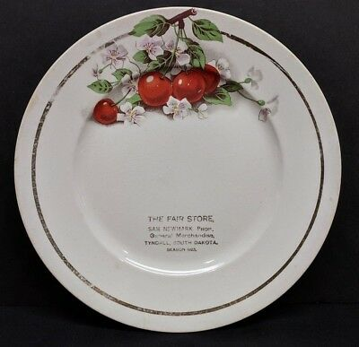 Vintage The Fair Store Tyndall South Dakota SD Advertising Plate/Dish Berries 9""