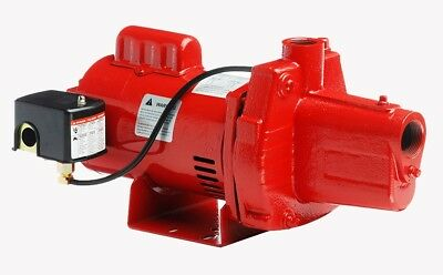Red Lion RJS-100-PREM 1HP Cast Iron Thermoplastic Shallow Well Jet Pump | 602208