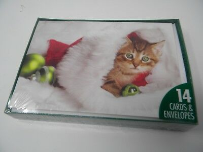 Box 14 Cards Kitten Cat in Peeking Out of Santa Hat Christmas