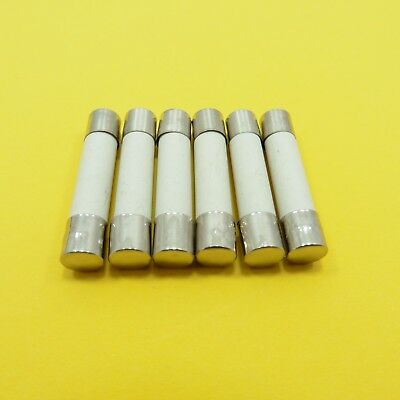 CERAMIC Fuse 6mmx30mm Quick Blow Fast Acting 250V Tube Body