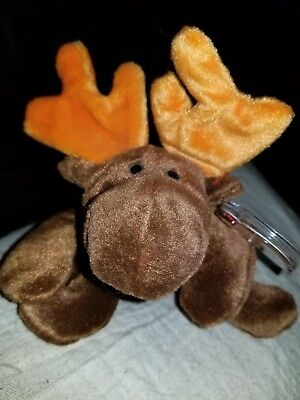 TY Beanie Babies Plush Chocolate The Moose 1993 Retired NEW w/Tags with errors