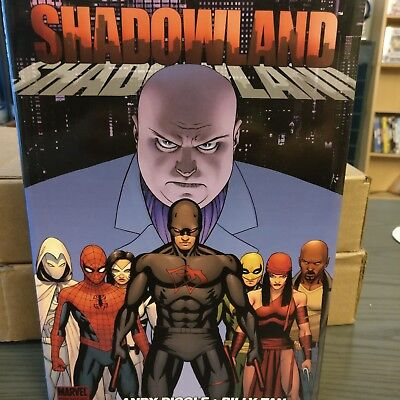 Daredevil Shadowland Hardcover graphic novel
