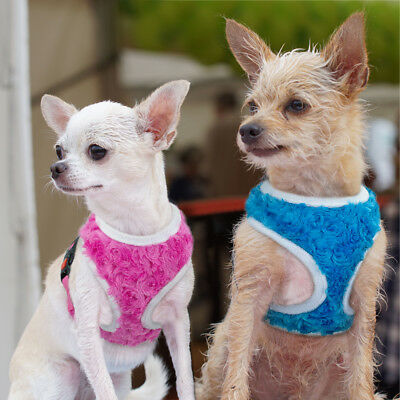 Small Dog Harness Pet Lace Harness Puppy Cat Walking Safety Control Vest S-L