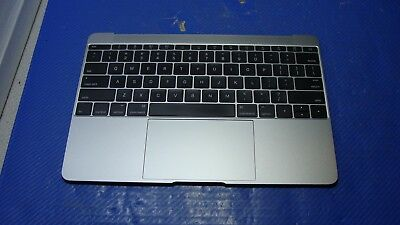 "MacBook Retina 12/"" A1534 2016  Inside Screws 30 DAYWTY"