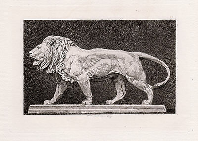 "Magnificent 1800s Antoine-Louis BARYE Antique Etching ""Lion Walking"" FRAMED COA"