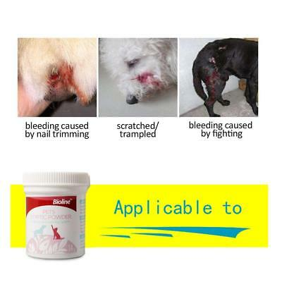 Pet Grooming Styptic Powder For Dog Cat Bird Claw Nail Wound Bleeding