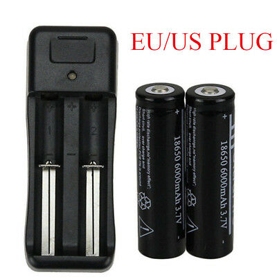 2Pcs 18650 6000mAh 4.2V Li-ion Rechargeable Battery with Charger Sets