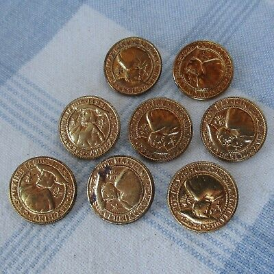 Set of 8 Coin Like Brass Buttons,