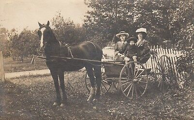 Postcard of Horse and Buggy with 2 Ladies and a boy