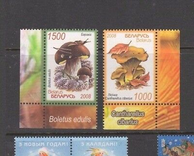 BELARUS  2008  MNH   SC=668 - 669  Mashrooms