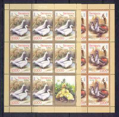 BELARUS   2009  MNH  SC=695-697 2  MiniSheet of  8 st+L   and  SS  POULTRY