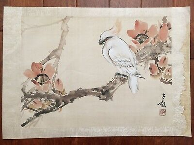 Antique Chinese Water Color Painting Scroll Album Page Cockatoo on Branch by 陳子毅