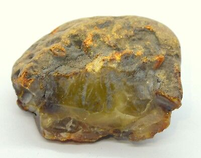 Huge Raw Amber Stone 55 Grams Yellow Butterscotch Natural Baltic 100% 琥珀蜜蜡原石