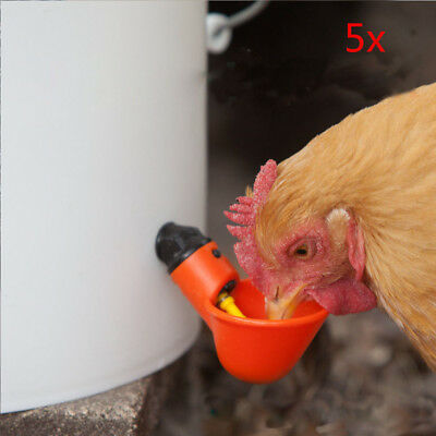 Great 5x Poultry Water Drinking Cups Chicken Hen Plastic Automatic Drinker USA