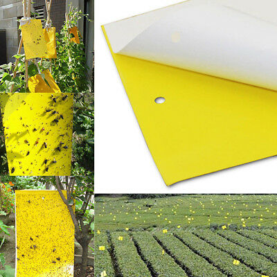 5Pc Yellow Sticky Insect Killer Whitefly Thrip Fly Gnat Leafminer Glue Trap Tool