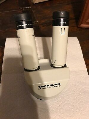 Wild Heerbrugg Top Piece Microscope With Zoom Base And 10x/21 Eyepieces
