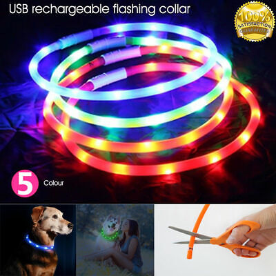 USB Rechargeable LED Dog Collar Band Leash Glow Light Up Safety Pet Collars AU
