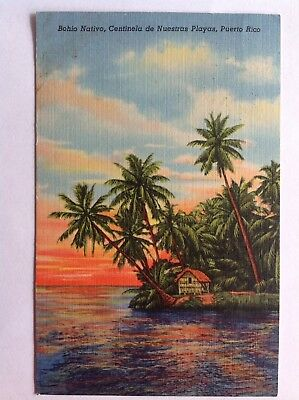 Puerto Rico~1954~native hut~beach~palm trees~red airplane postmark~airmail stamp