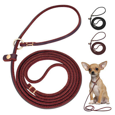 Brown Black Soft Leather Dog Leash Lead Training Slip Rolled Show for Puppy Dogs
