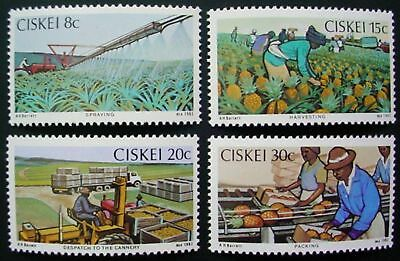 1982 Ciskei: Pineapple Production: Set Of4 Mnh Stamps: