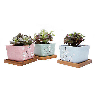 Pack 3 T4U 3 Inch Succulent Pots Ceramic Cactus Planter with Bamboo Tray Square