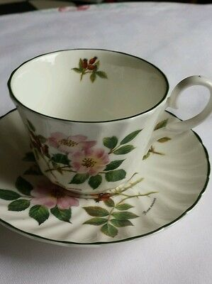 Royal Patrician Fine Bone China Cup & Saucer Made In England