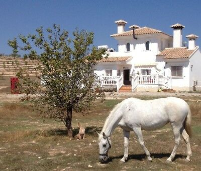 A Beautiful Spanish Villa 5 Acre of Fenced Flat Land Totana Lorca Murcia Spain