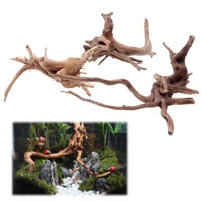 Hot Sales Fish Tank Driftwood Natural Wood Trees Trunk Aquarium Decor Plants US