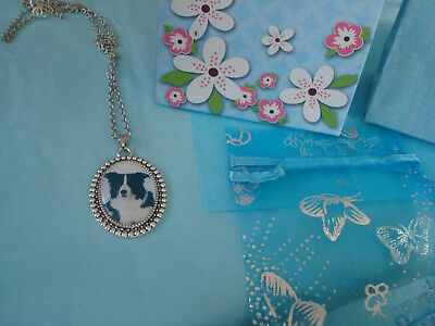 BORDER COLLIE'   Pendant and chain  NEW with gift bag
