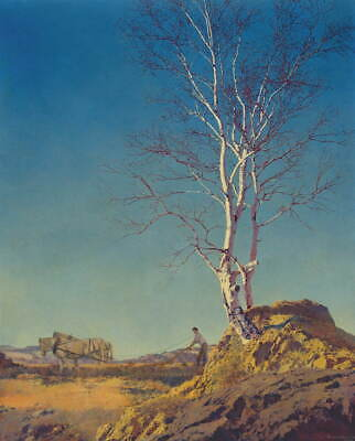 Maxfield Parrish Daybreak By Parrish Giclee Canvas Print Paintings Poster