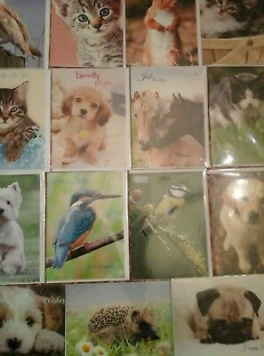 50 Animal Magic Cards, Wholesale Joblot Greeting Cards