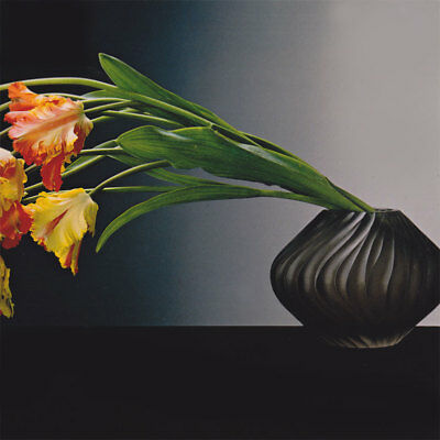 Parrot Tulips 1988 Ancien Authentique Tirage Original Offset Robert MAPPLETHORPE
