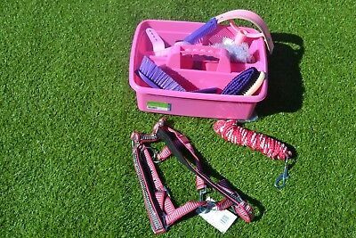 Grooming Kit Pinks Purples With Pink Diamante Head Collar Set New Pony Size