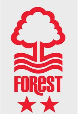 nottingham forest football club car or wall sticker - notts forest