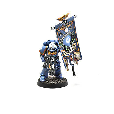SPACE MARINES Ancient with adeptus banner primaris #1 PRO PAINTED Warhammer 40K