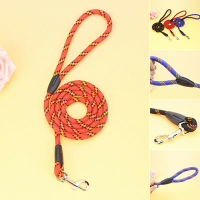 Nylon Leash Slip Strap Puppy Traction Strong Training Harness Rope Lead Dog Pet