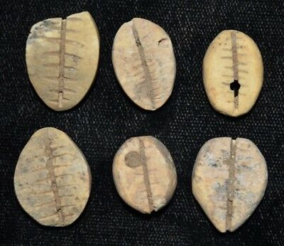 """Set of 6 Ancient Chinese """"Cowrie Shell"""" Money Coins/Beads 1750-1150 BC A33"""